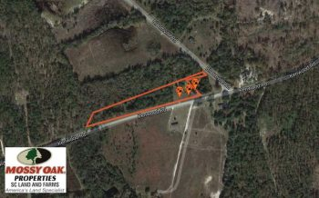 UNDER CONTRACT!  3.3 Acres of Residential Land For Sale in Clarendon County SC!