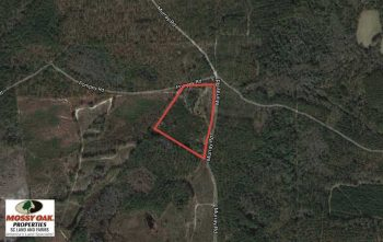 UNDER CONTRACT!  16 Acres of Hunting Land For Sale in Clarendon County SC!