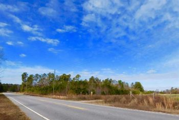 UNDER CONTRACT!  101.7 Acres of Farm Land For Sale in Clarendon County SC!