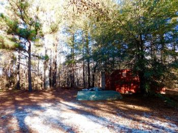 REDUCED!  68 Acres of Riverfront Hunting Land For Sale in Williamsburg County SC!