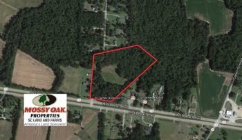 UNDER CONTRACT!  10 Acres of Farm and Timber Land For Sale in Sumter County SC!
