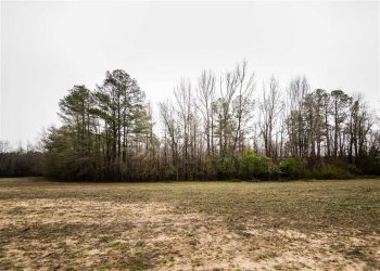 A great LAND OWNERSHIP opportunity in Marlboro County!