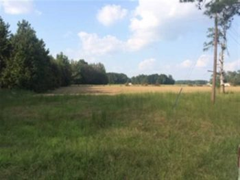 10.2 ACRES WITH HUNTING AND HOUSE SPOT IN CLARENDON COUNTY